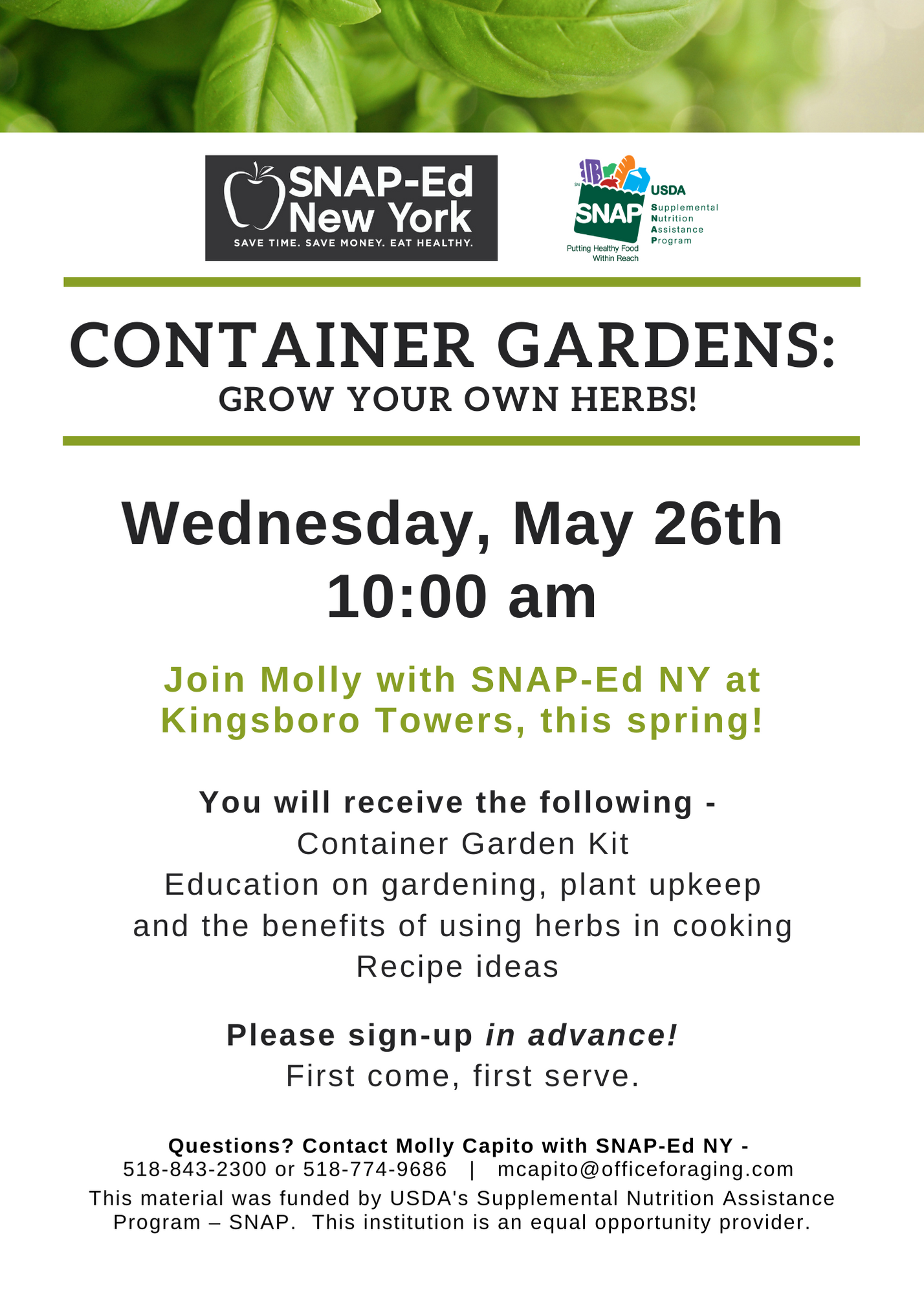 Container Gardens Kingsboro